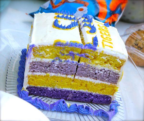 LSU Cake - 7