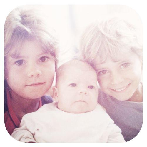 Sis 1981
